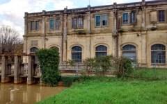 Pisa: Confesercenti contraria alla centrale a biomasse di Coltano