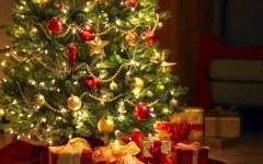Toscana, crisi anche per l'Albero di Natale: ora va quello di plastica (costa meno)