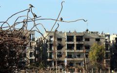 Siria, terrorismo: attentato con autobomba, decine di morti a Homs