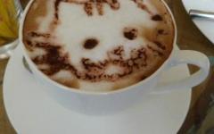 Cat Café: aprirà a Prato il primo bar con gatti della Toscana