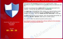 Informatica: virus ransomware, cresce l'allarme. Tra i più diffusi c'è il Cryptolocker