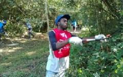 Migranti, Toscana: al lavoro per curare le aree protette. Nelle province di Lucca e Pisa