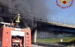 Bologna: esclusa per l'altezza alla selezione dei vigili del fuoco vince il ricorso al Tar