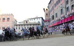 Siena palio: svolta la tratta, i cavalli assegnati alle 10 contrade