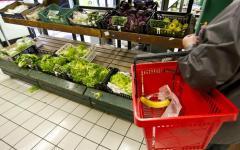 Economia: cibo, ogni toscano ne spreca 90 kg ogni anno. Indagine della Cia e Associazione pensionati