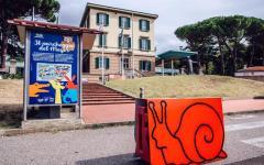 Firenze, ospedale Meyer: il parcheggio diventa uno zoo. Segnaletica con gli animali