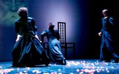 Firenze: al Teatro Florida «SDD Shakespeare Dead Dreams»