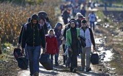 Belgrado: la marcia di centinaia di migranti sotto la pioggia e il freddo verso la Croazia. Diretti in Italia