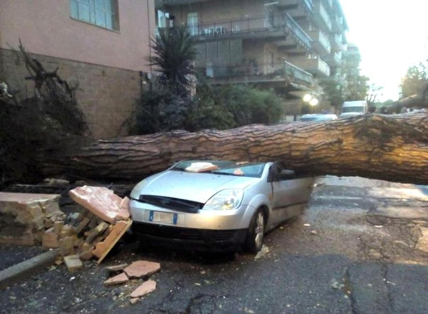 A tree fell on a car due to the tornado that hit Ladispoli, 50 km north of Rome, Italy, 06 November 2016. ANSA/ALESSIO CAMPANA