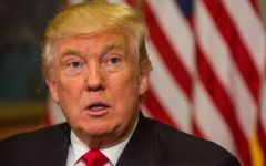 Trump: pronto a lavorare con Putin contro Isis in Siria