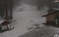 Vento forte a Firenze: alberi e rami caduti in via Circondaria, via Mariti, via Vespucci. Neve in provincia di Arezzo