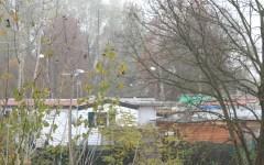 Torino: Il Tar stabilisce che la legge vale anche per i rom, non esistono diversi diritti delle minoranze
