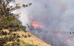 Incendi: protesta dei vigili del fuoco. Elicotteri non volano, spariti 8.000 forestali passati ai carabinieri