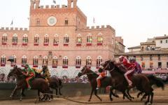 Siena: palio dell'Assunta, estratte Lupa, Aquila e Bruco