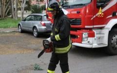Maltempo: cadute di alberi a Firenze e Pisa, danneggiate auto