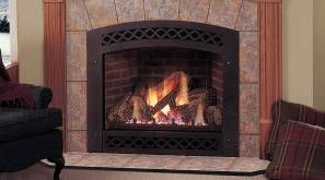 Monessen Lexington Series Direct Vent Fireplaces for Elegant Natural Gas Fireplace Insert With Blower