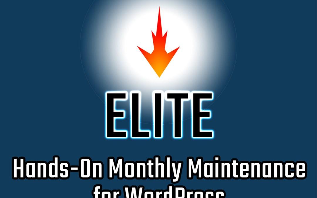 Elite WordPress Maintenance Services