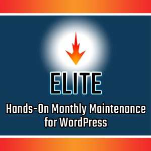 Elite WordPress Maintenance Services