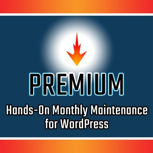 Premium WordPress Maintenance Services