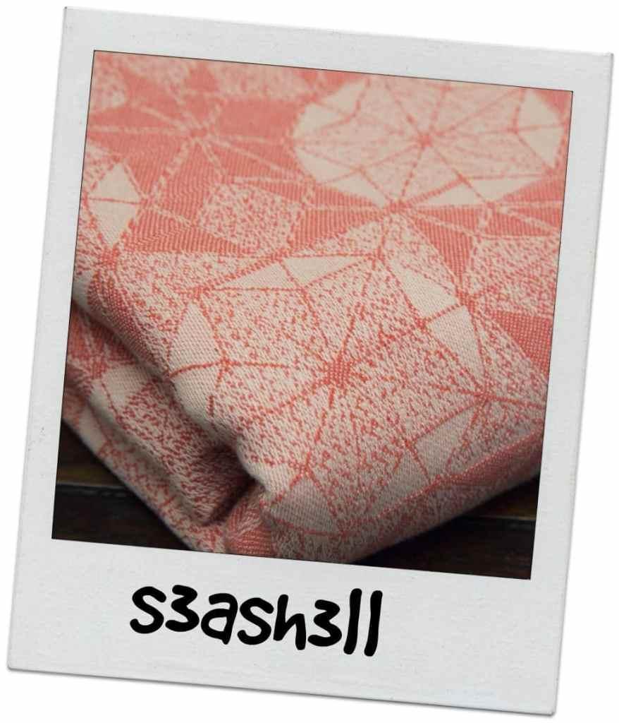 seashell-min