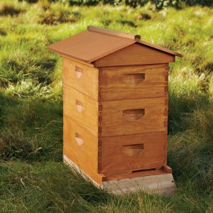 Beehive Boxes