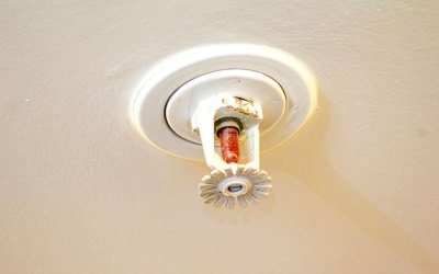 One Residential Sprinkler Head Saves the Day