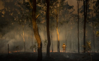 Aborigines Have a History of Fuel Management Preventing Devastating Wildfires