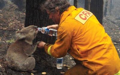February in fire history – Black Saturday bushfires