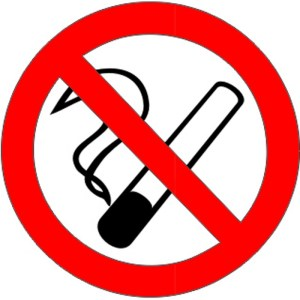 no smoking sign - vinyl