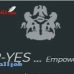 P-YES Application 2019 | Financial Opportunities at www.p-yes.org.ng