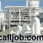 Dangote Refinery Recruitment 2019 – Apply For Massive Open Positions Here