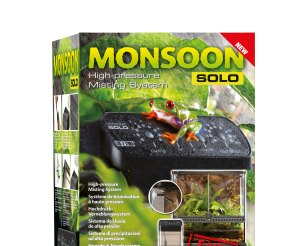 Monsoon Solo