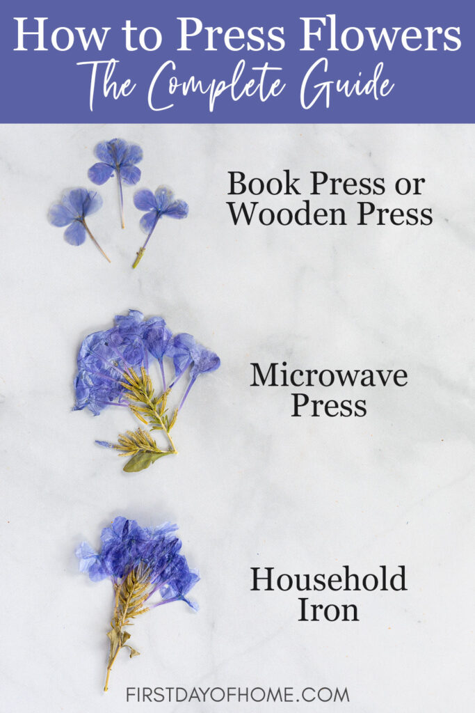 how to press flowers a complete guide