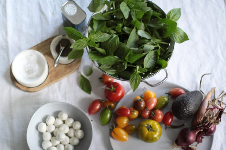 Caprese salad ingredients view from the top.