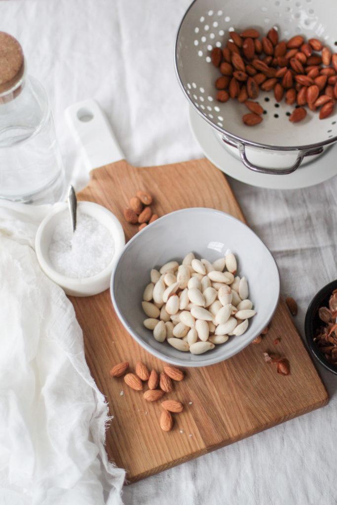 Ingredients for almond milk