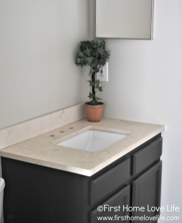 Bathroom Vanity with Quartz Counter First Home Love Life