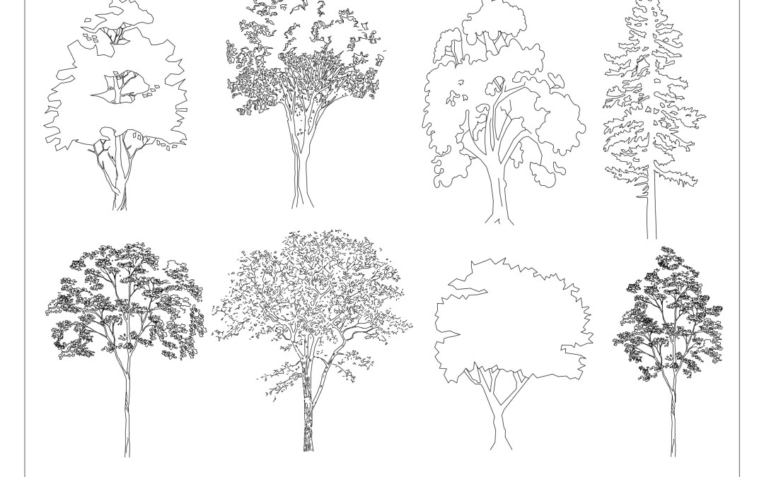 Free CAD Blocks – Trees 02