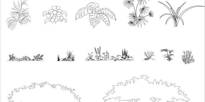 Free Cad Blocks Plants And Bushes 01