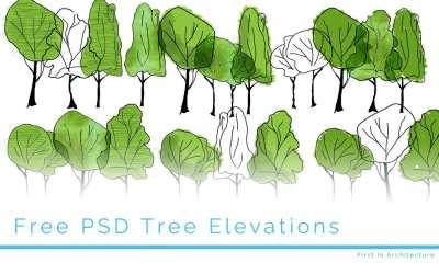 Colour Trees – Free PSD Download 3