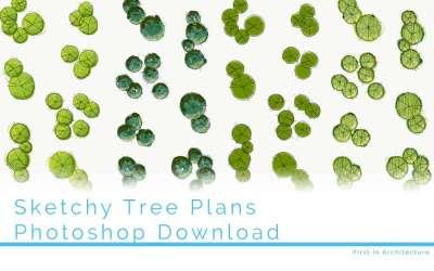 Hand drawn tree plans – Set 8