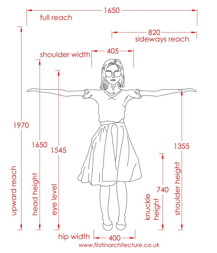 01 Dimensions of woman standing
