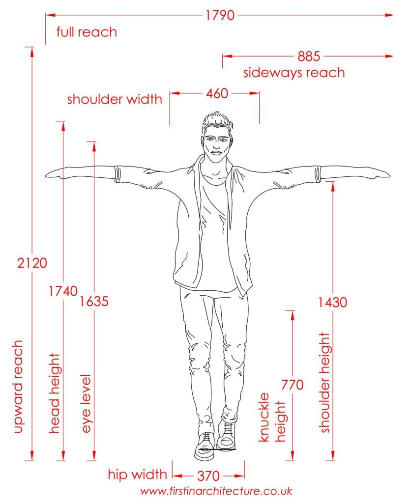 11 Dimensions of man standing