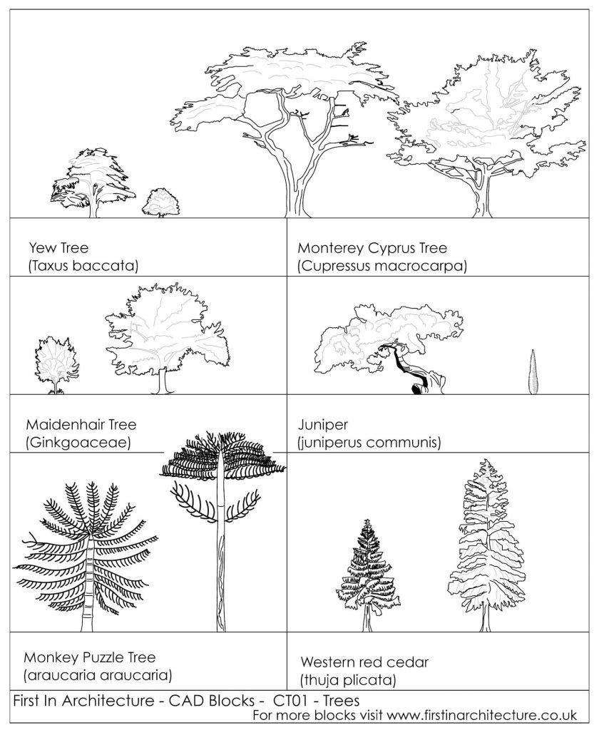 CAD Blocks Trees