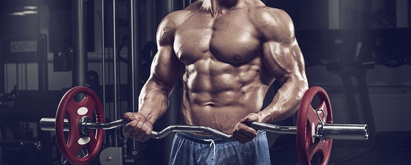 THE DO S AND DON TS FOR BIGGER BICEPS - First Nutrition c00f2184b86