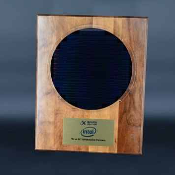Silicon Wafer Plaque