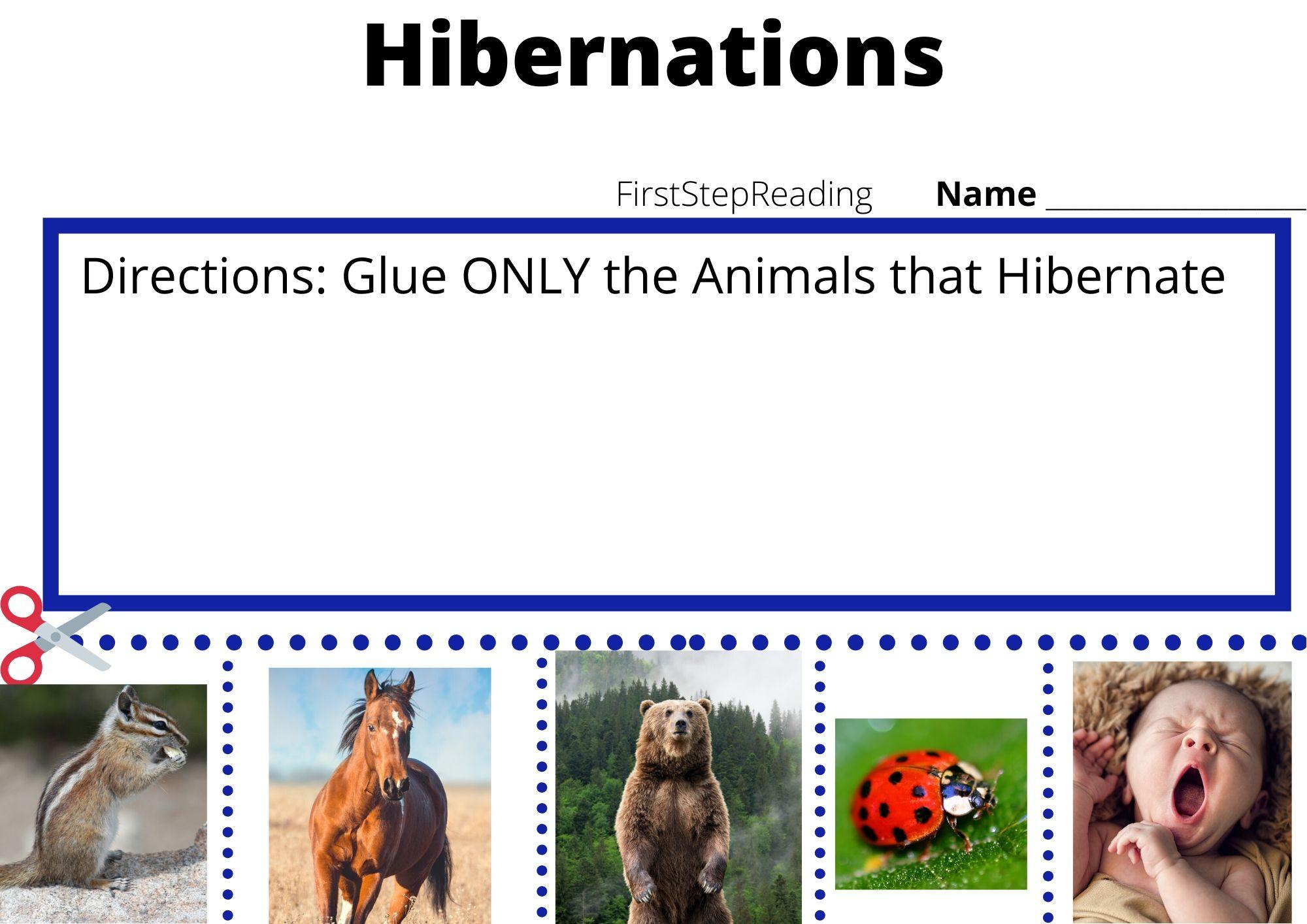 Hibernation Worksheet