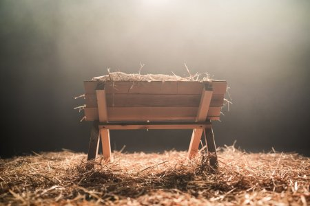 A manger surrounded in hay.