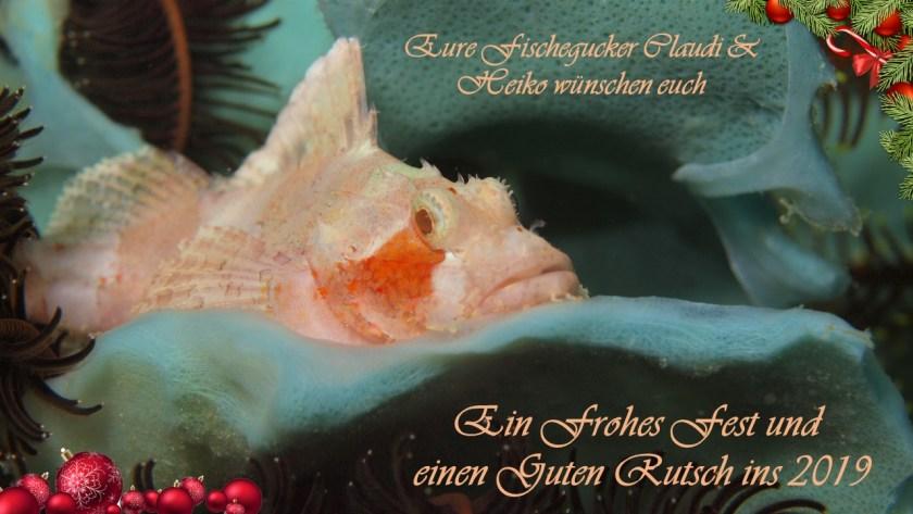 Weihnachtsgrüße aus dem Vogtland