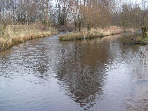 Mündung Sennebach