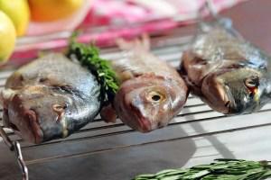 Frischen Fisch grillen. Ganzer Fisch wie Dorade, Wolfsbarsch oder Rotbrasse sind gut geeignet. Aber auch Forelle und Makrele schmecken lecker vom Grillrost.